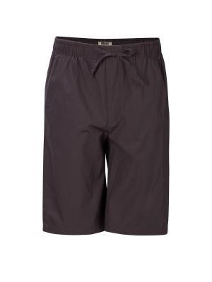Бермуды Proto. Цвет: коричневый