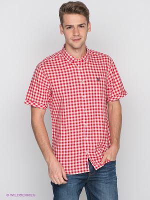 Рубашка U.S. Polo Assn.. Цвет: красный, белый
