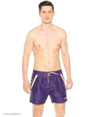 Шорты плавательные Johnny Brasco. Цвет: фиолетовый