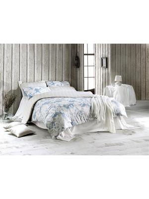 Комплект постельного белья DECO ROSE  сатин, 200ТС, 100% хлопок, евро ISSIMO Home. Цвет: голубой