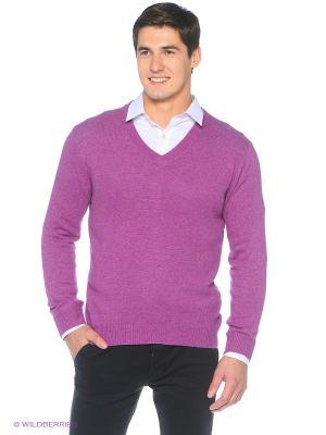 Пуловер Fine Joyce. Цвет: сливовый