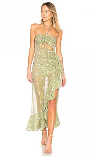 Платье миди bellisima X by NBD. Цвет: зеленый