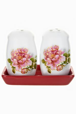 Специи набор 11,5х6х8,5 см Polystar. Цвет: белый, красный, розовый