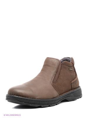 Ботинки Shoiberg. Цвет: серый, бледно-розовый