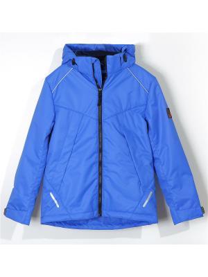 Куртка для мальчика AVESE. Цвет: индиго