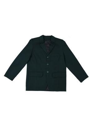 Пиджак НИВ. Цвет: зеленый