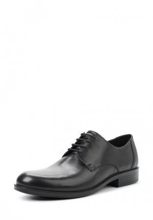 Туфли HAROLD Ecco. Цвет: черный