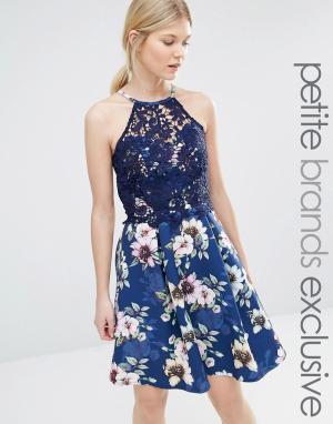 Paper Dolls Petite Платье-халтер для выпускного с цветочным узором на юбке и кружевом. Цвет: темно-синий