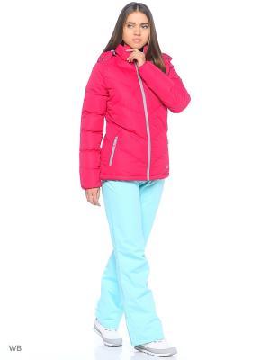 Куртка Trespass. Цвет: малиновый