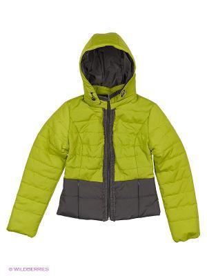 Куртка Disvey. Цвет: салатовый, серый