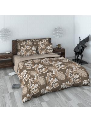 Комплект постельного белья из сатина Евро Василиса. Цвет: коричневый