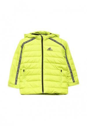 Пуховик adidas. Цвет: зеленый