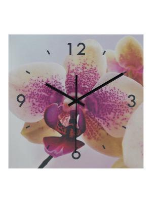 Часы настенные Орхидея HOLSTART. Цвет: сиреневый
