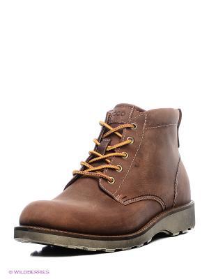 Ботинки ECCO. Цвет: темно-коричневый