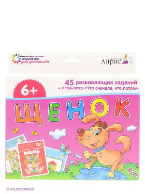 Набор занимательных карточек для дошколят. Щенок АЙРИС-пресс. Цвет: розовый