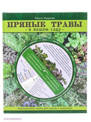 Пряные травы в вашем саду Эксмо. Цвет: зеленый