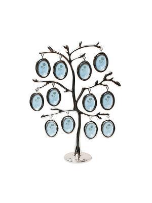 Фоторамка Дерево 12 фото 4х5см PLATINUM quality. Цвет: серебристый