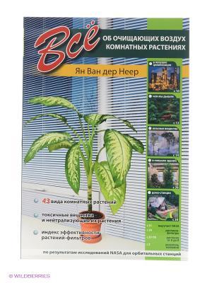 Все об очищающих воздух комнатных растений (б.ф.,цв.ил) Издательство СЗКЭО. Цвет: белый