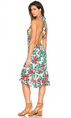 Платье gill Vix Swimwear. Цвет: зеленый