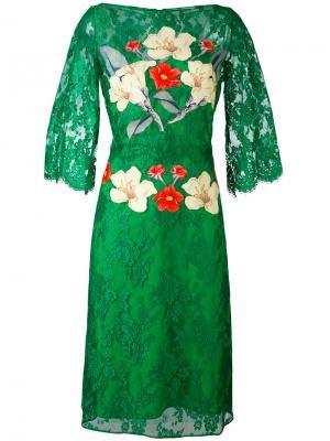 Кружевное платье с цветочным принтом Rhea Costa. Цвет: зелёный