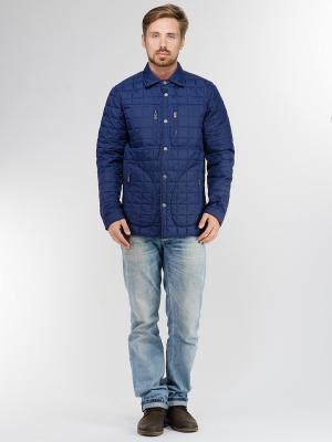 Куртка EVOLUTION. Цвет: синий, бордовый