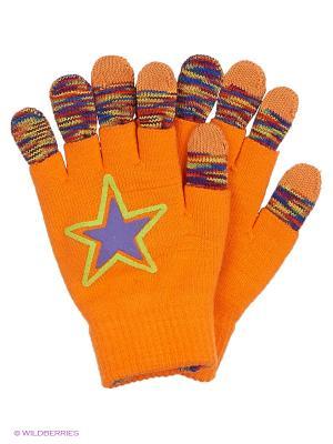 Перчатки для сенсорных экранов TERRITORY. Цвет: оранжевый