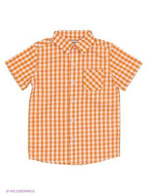 Рубашка с коротким рукавом Modis. Цвет: оранжевый, белый