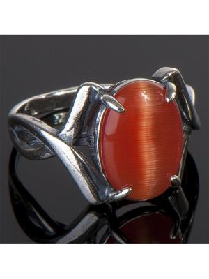 Кольцо Танго Кошачий глаз Колечки. Цвет: оранжевый