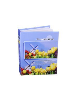 Фотоальбом на 200 фото 10х15см, 17,5х23см, бумага, пластик, KONONO. Цвет: желтый