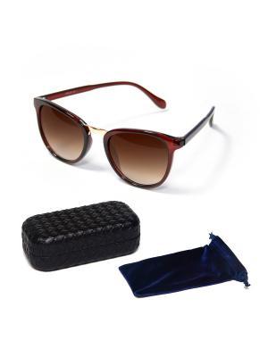 Очки солнцезащитные 6210 , цвет - коричневый + чехол футляр Prius. Цвет: коричневый