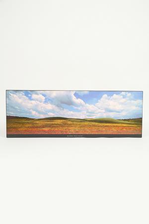 Постер Маки 33х95 см F.A.L. Цвет: мультицвет