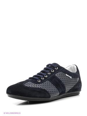 Ботинки PIRANHA. Цвет: синий