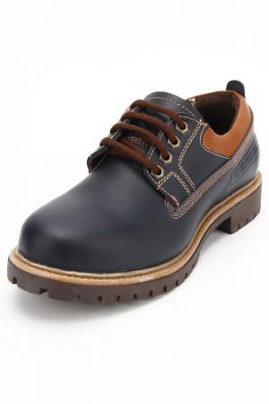 Ботинки Etor. Цвет: синий, орландолион