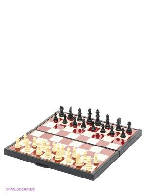 Шахматы магнитные Играем вместе 3 в 1. Цвет: темно-коричневый