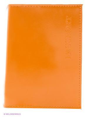 Обложка для паспорта Mitya Veselkov. Цвет: оранжевый