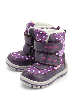 Сапоги Indigo. Цвет: фиолетовый