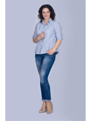 Блузка Лагуна. Цвет: серый, белый