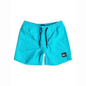 Плавки-шорты с вышитым логотипом, 8 - 16 лет QUIKSILVER. Цвет: темно-синий