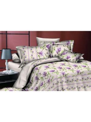 Комплект постельного белья евро, поплин BegAl. Цвет: серый