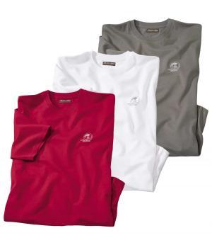 Комплект из 3-х футболок AFM. Цвет: разноцветньіи
