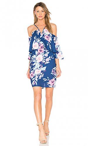 Платье celine Yumi Kim. Цвет: фиолетовый