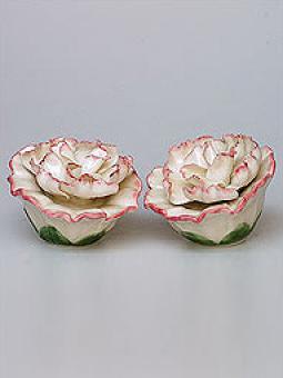 Набор Гвоздики Pavone. Цвет: кремовый, розовый