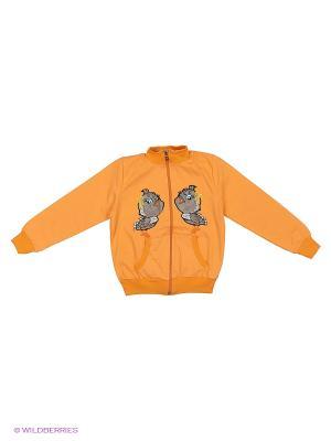 Кофта с начесом Bermini. Цвет: оранжевый