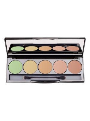 Набор Корректор для лица Skin Perfect corrector 5 ячеек №02 (1,2,4,5,6) Limoni. Цвет: салатовый, бежевый, бледно-розовый, светло-коралловый, темно-бежевый