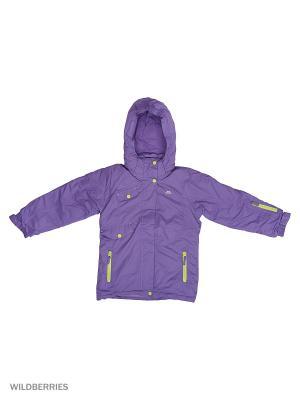 Куртки Trespass. Цвет: фиолетовый