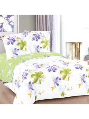 Постельное белье Tet-a-Tet 2,0 сп. Amore Mio. Цвет: белый, зеленый, фиолетовый
