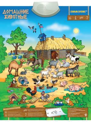Электронный звуковой плакат ЗНАТОК Домашние животные. Цвет: лазурный, зеленый