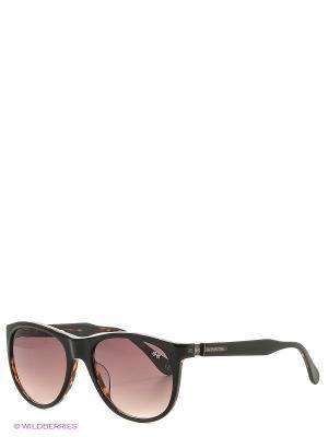 Солнцезащитные очки LM 557S 01 La Martina. Цвет: коричневый
