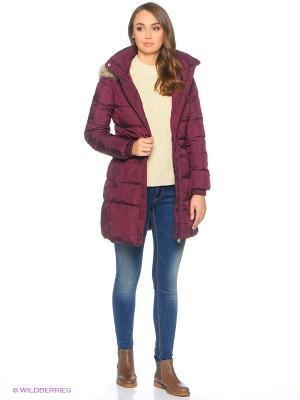Куртка Colin's. Цвет: сливовый