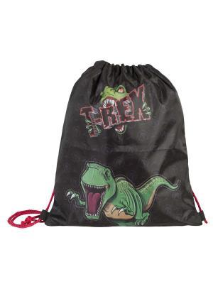 Мешок для детской сменной обуви Динозавр Тирекс Target. Цвет: черный, зеленый, красный